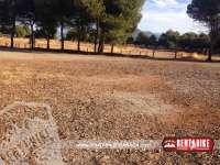 Llano de la Perdiz - bicicleta de alquiler rent a bike granada