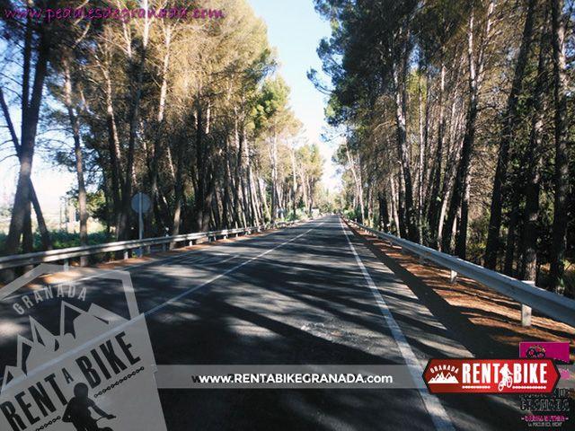 Route Mendrugo 03 - bicycle rental rent a bike Granada