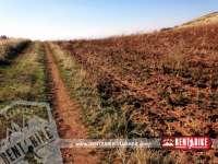 Veredas de Dilar - bicicleta de alquiler rent a bike granada